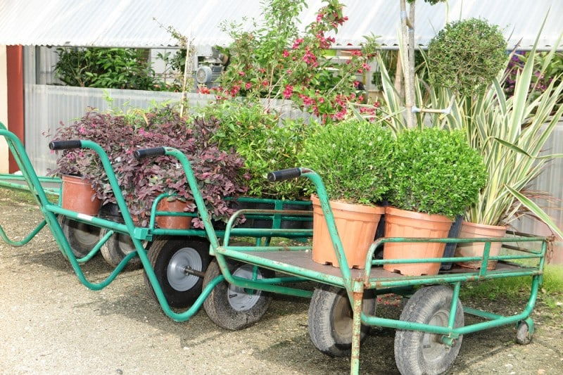 Temporary Buildings for Hire for Garden Centres